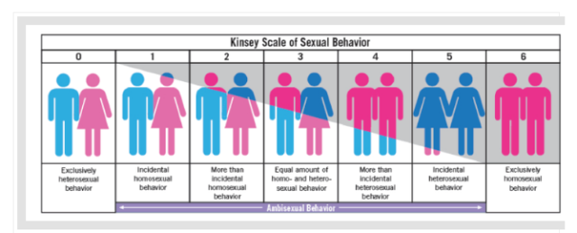 Image from https://schnippits.wordpress.com/tag/kinsey-scale/